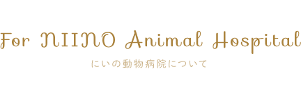 For NIINO Animal Hospital