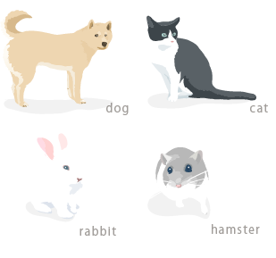 dog cat rabbit hamster